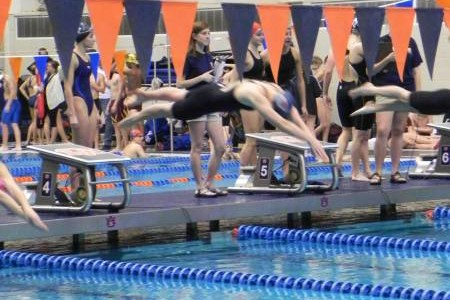 OMHS Swim Team Competes at the AHSAA State Meet