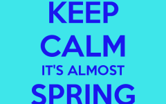 Poll: What are your plans for Spring Break this year?