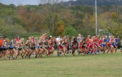 Cross Country Runners Finish Strong at Sectional Meet